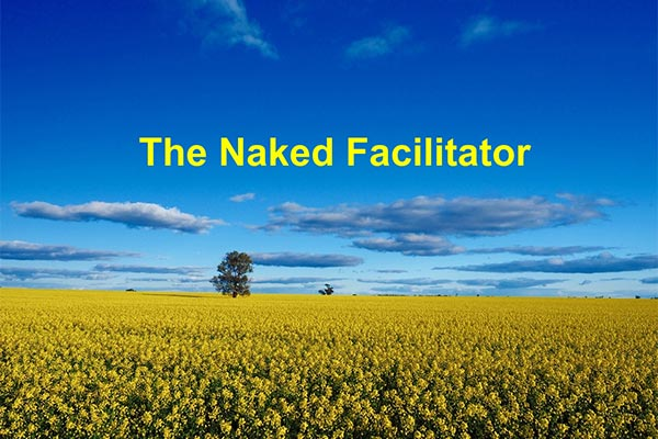 Naked Facilitator by Johnnie Moore